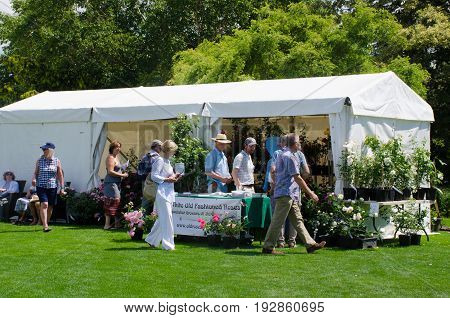 Hyde Hall Essex -17 June 2017: People visiting outdoor rose tent