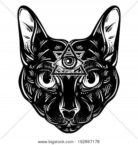 Vector hand drawn ilustration of cat. Character design. All seeing eye pyramid symbol.Egyptian spirituality boho design. Template for card poster banner print for t-shirt.