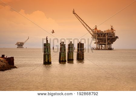 Oil rig platforms in late afternoon with pelicans in foreground