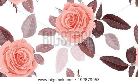 Garden flowers of rose. Seamless floral pattern. Vector illustration - template of luxury packaging textiles paper. Leaves and pink flowers on white background. Victorian realistic style. Vintage.