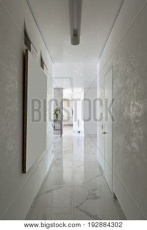 Nice corridor in a modern style with textured light walls and a tiled floor. There is a hall with tables, flowers in a vase, metal decoration in a form of the feather, door. Indoors. Vertical.