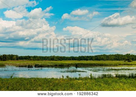 Expansive wetlands under a dramatic sky.