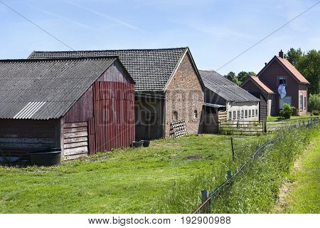 Farm and barns in a row in Buren in the Netherlands