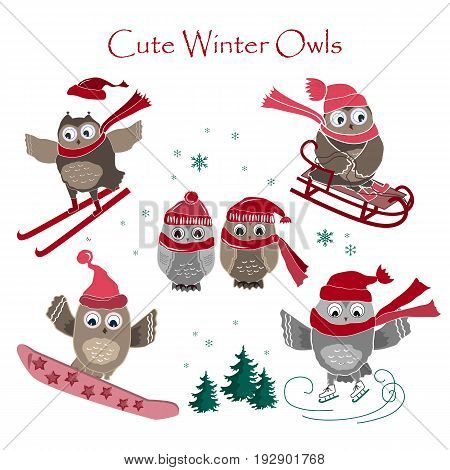 Cute winter owls collection. Winter sport and owls. Vector illustration