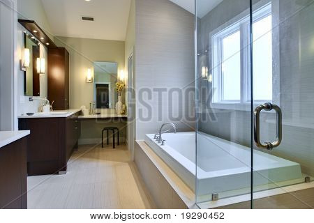 Luxury Master Bath with glass shower and large bath tub