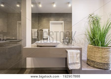 Simple but stylish lavatory with glass wall