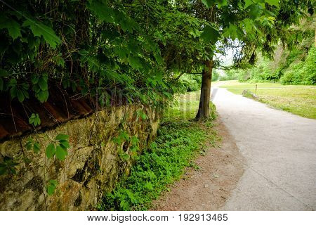 Road, summer green trees and old abandoned overgrown fence. Park, lawn, grass, ruins. Beautiful summertime landscape for prints, posters, wallpapers, calendars, design, interior decoration.