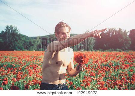 Muscular Man In Field Of Red Poppy Seed