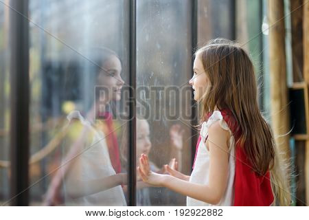 Cute Little Girl Watching Animals In The Zoo On Summer Day. Child Watching Zoo Animals Through The W