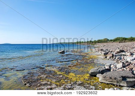Bright flat rock coast by summer season at the swedish island Oland in the Baltic Sea