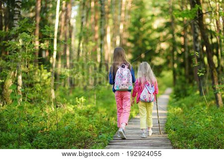 Two Cute Little Sisters Having Fun During Forest Hike On Beautiful Summer Day
