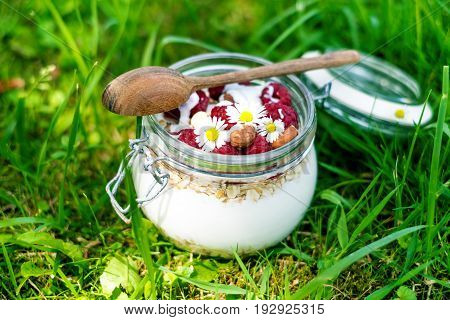Full jar of muesli, yogurt, raspberries, nuts on a grass in a garden. Homemade breakfast cereals food. Healthy eating
