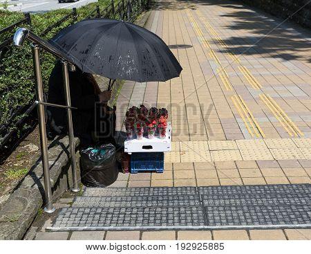 Elderly woman under an umbrella selling fresh strawberries