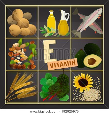 Fruits And Vegetables Containing Vitamin E Vitamin e vector illustration vector photo bigstock vitamin e vector illustration foods containing vitamin e on a dark grey background source workwithnaturefo