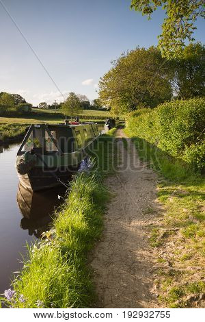 A late summer afternoon on the 200 year old Shropshire Union canal in England with traditional British narrowboats moored up on the bank