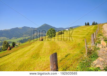Summer Day In The Mountains Landscape. Blue Sky. Carpathian, Ukraine, Europe