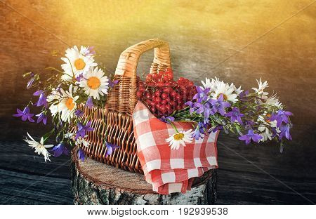 Basket with viburnum and wildflowers bluebells and daisies on a red napkin in the sun . Wooden background. The horizontal frame.
