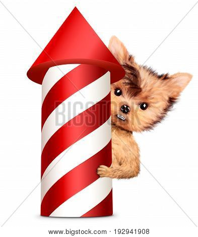 Funny dog holding firework rocket isolated on white background. Concept of fun party. Realistic 3D illustration.