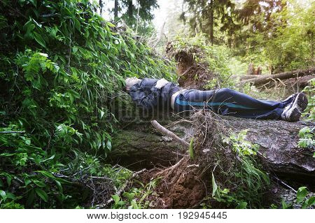 The man traveler resting on a fallen tree in the forest dreaming of a life-saving life a way of life