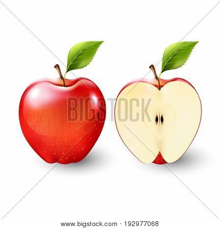 Red apple and a half of apple, fruit, Vector illustration
