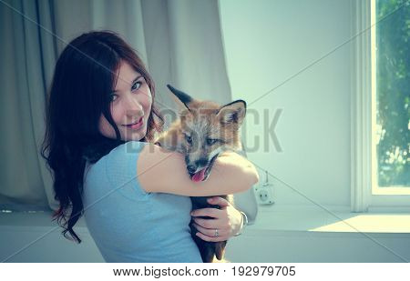 A beautiful smiling girl is holding a fox puppy in her hands.