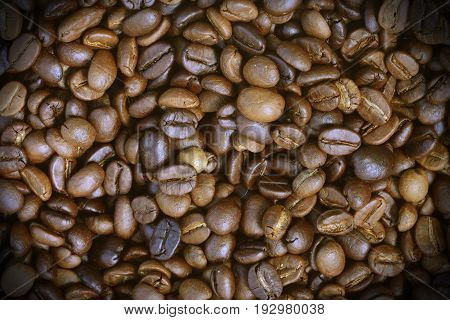 roasted arabica coffee beans can be used as a background