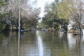 this photo shows the flooding incurred in new orleans after hurricane katrina. the flood water in this metairie neighborhood was just over five feet. poster