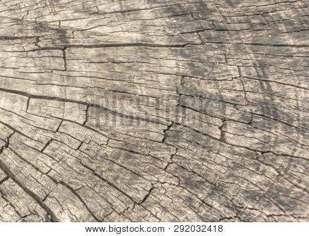 Cracked Old Wood Texture Background - Distressed, Grunge Wood Detail