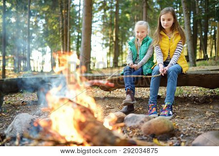 Cute Little Sisters Roasting Hotdogs On Sticks At Bonfire. Children Having Fun At Camp Fire. Camping