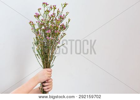 Wild Flower Bouquet With Negative Space For Text