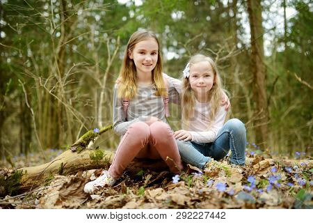 Two Cute Young Sisters Having Fun During Forest Hike On Beautiful Early Spring Day. Active Family Le