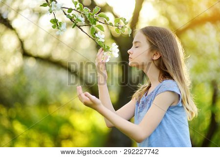 Adorable Little Girl In Blooming Apple Tree Garden On Beautiful Spring Day.