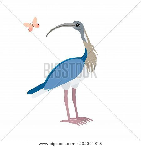 Vector Flat Cartoon Animal Clip Art Ibis Bird