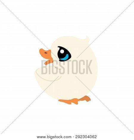 Vector Flat Cartoon Animal Clip Art Ducky Duck