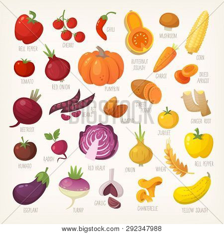 Variety Of Yellow, Red And Purple Common Farm And Exotic Fruit And Vegetables. List Of Plants From G