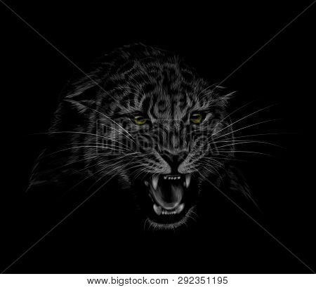 Portrait Of A Leopard Head On A Black Background. Grinning Of A Leopard. Vector Illustration
