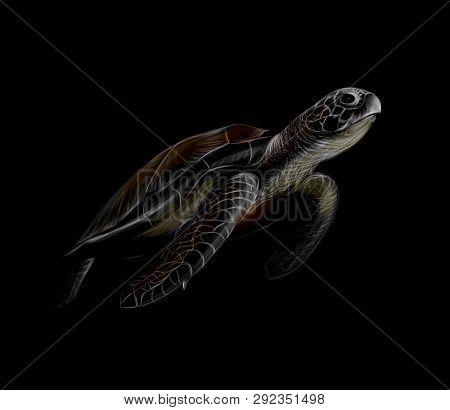 Portrait Of A Big Sea Turtle On A Black Background. Vector Illustration