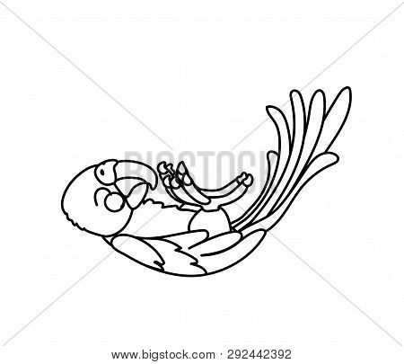 Vector Line Cartoon Animal Clip Art Ara Parrot, Macaw