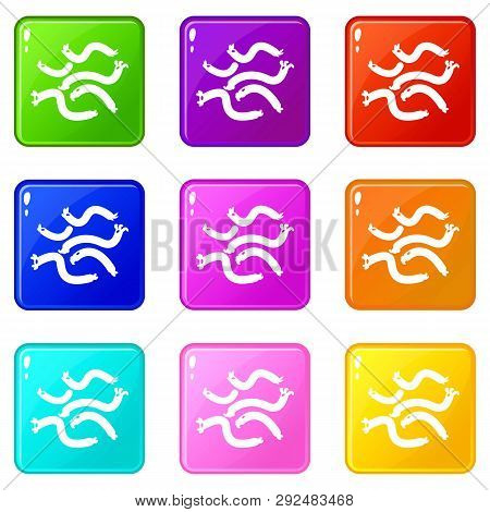 Escherichia Coli Virus Icons Set 9 Color Collection Isolated On White For Any Design