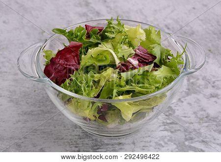 Salad. Organic Food. Healthy Vegetable Salad With Escarole Endive, Frisee Endive, Chicory Radicchio,