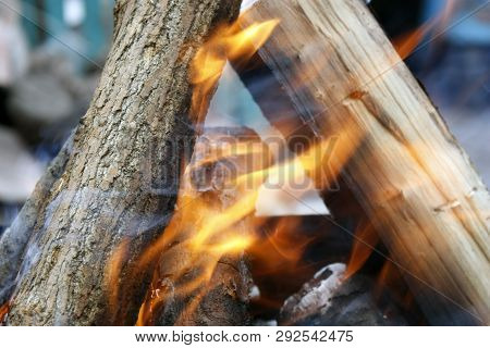 Burning Tree In The Grill. Bonfire On The Grill With Smoke. Arson Or Natural Disaster. Bonfire Close