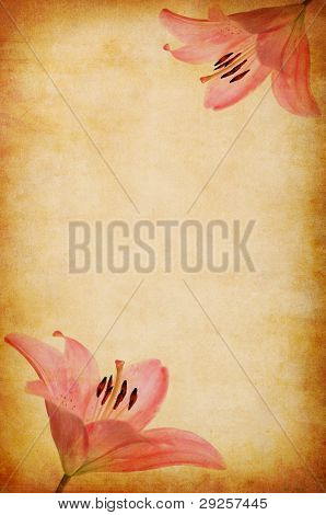 Abstract Grunge Pink Lilly Background