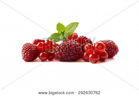 Red Berries Isolated On White Background. Ripe Currants And Raspberries. Ripe Berries Close-up. Back