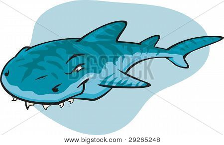 Cartoon Tiger Shark