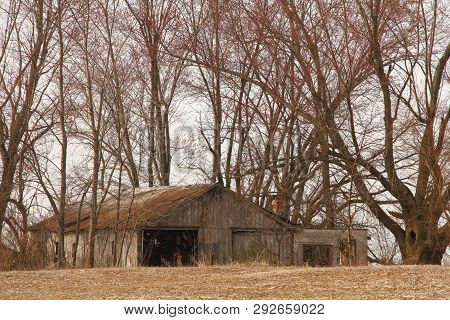 A Abandoned Garage Along The Road Side In A Grove Of Trees Near St. Joseph Mo.