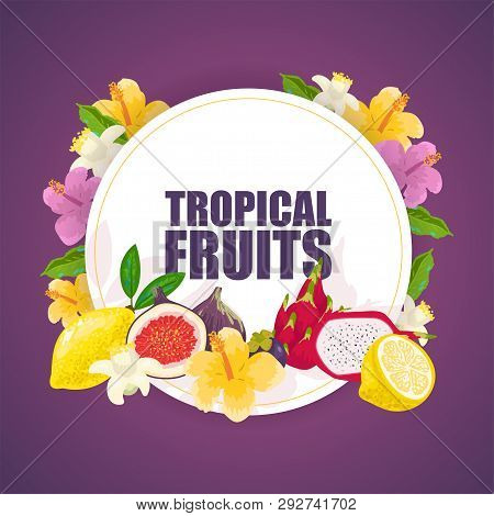 Tropical Fruits Banner, Poster Vector Illustration. Exotic Summer Products Such As Mangosteen, Mango
