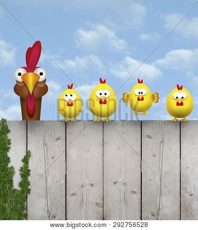 Cute Free Range Cihcken Mother With Her Chick Kids, Sitting On Old Wooden Fence, Isolated On White B