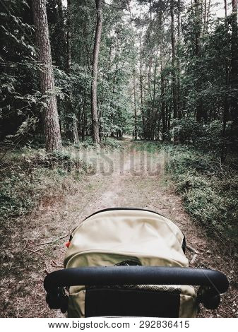 Back side of stroller riding on forest path. Walking on nature together.