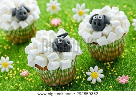 Sheep Cupcakes , Lamb Cupcakes , Adorable Easter Cupcakes Decorated With White Marshmallow And Black