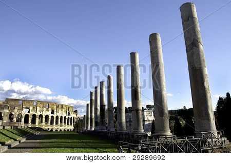 Colesseum and Pilars of the Antiquarium Forense
